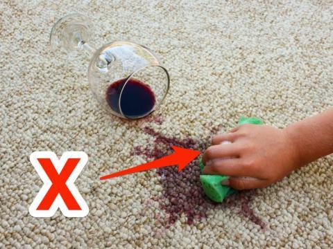 Rocía las manchas de la alfombra con un limpiador y agua.