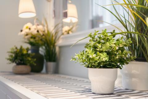 Plantas artificiales.