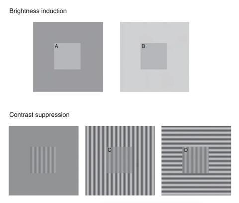 La prueba óptica utilizada en el estudio: los parches A y B y los parches C y D son los mismos.