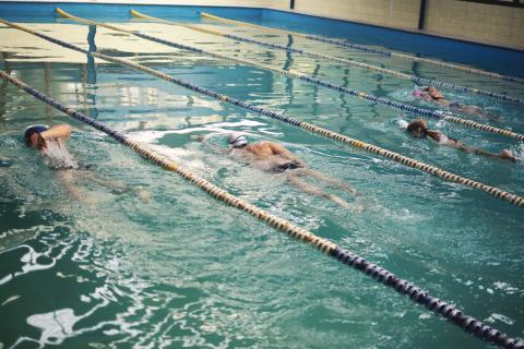 Varias personas nadan en una piscina.