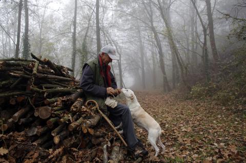 Un recolector revisa una trufa que encontró su perro en el bosque de Monchiero, cerca de Alba, en el noroeste de Italia.
