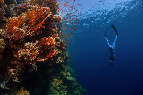 Profundidad del oceano