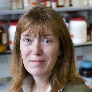 Sarah Gilbert, científica que ha desarrollado la vacuna COVID-19 de la Universidad de Oxford