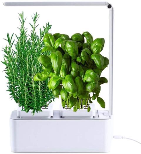 smart garden amzWOW
