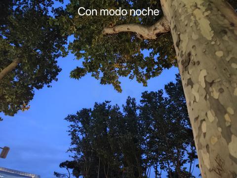 Disparo modo noche con Xiaomi Redmi Note 10 Pro.