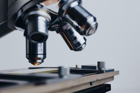 Científicos análisis bioquímica