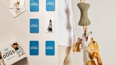Juego de memoria para perros (15,99 euros), juguete hueso (9,99 euros)