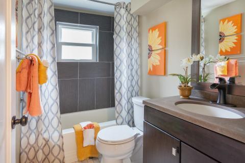 Cortinas cuartos de baño