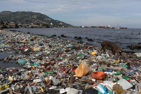 Lidl eliminará los microplásticos de sus productos de cosmética, limpieza y detergentes este año