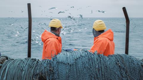 Pescadores en la cubierta de un barco.