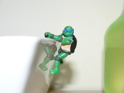 Tortuga Ninja.