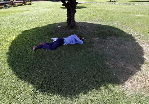 dormir verano calor árbol sombra