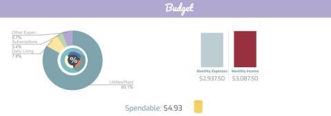 Hay una cantidad diaria para gastar en la parte superior del presupuesto que se puede personalizar.