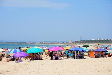 Una playa con muchas sombrillas.
