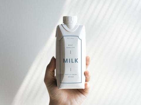Tetrabrick de leche