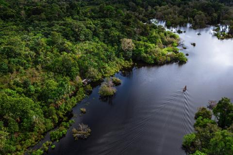 Vista aérea del amazonas y el río