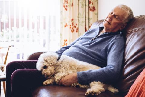 anciano, hombre durmiendo siesta
