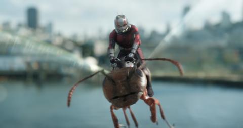 Antman, el hombre hormiga.