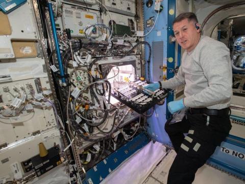 El astronauta de la NASA Shane Kimbrough introduce un dispositivo de transporte científico en el Advanced Plant Habitat (APH), que contiene 48 semillas de chile Hatch.