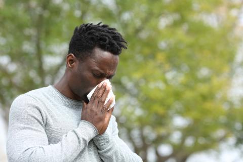 Un hombre estornuda por un resfriado.