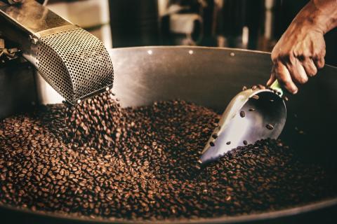 Intensidad del café vs cantidad de cafeína.