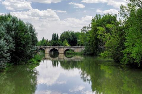 Puente Mayor, Palencia.