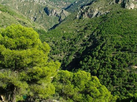 Sierra de Gador, Almería.