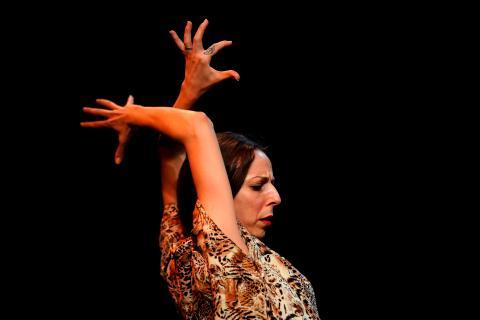 Tablao flamenco.