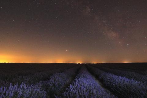 Vista de una noche desde un campo de lavandas en Tiedra.