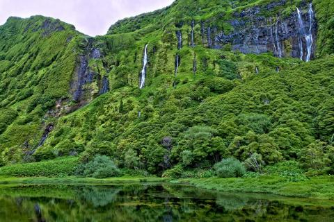 Cascadas en Isla Flores, Portugal.