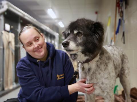 La mujer que cuida a los animales en los aeropuertos aparece al lado de un perro