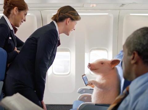 Un cerdo volando