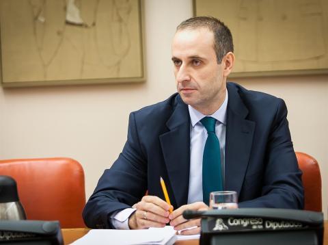 Jaime Ponce Huerta, Presidente del FROB.