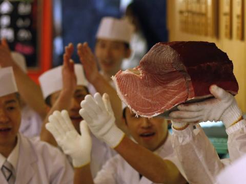 Los cocineros de sushi aplauden ante un trozo de un atún rojo de 222 kg en Tokio, el 5 de enero de 2013.