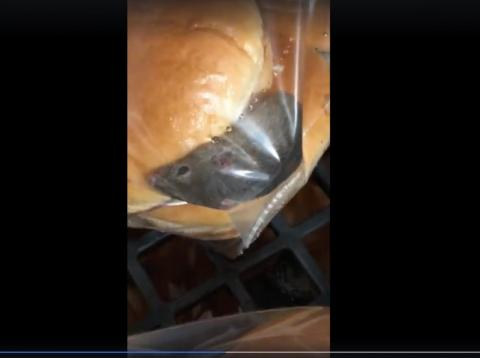 A live mouse was caught on tape at a Wendy's location in Oklahoma.