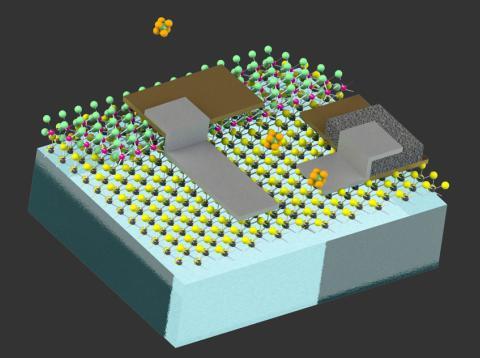 Diagrama robots del tamaño de células