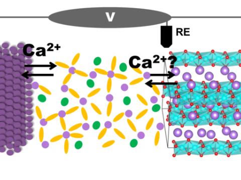 Batería de calcio recarragable. A la izquierda, ánodo de calcio metálico; y a la derecha: cátodo del óxido de calcio y cobalto. En el centro se sitúa el electrolito.