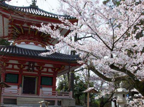 El templo Mieido Shrine, Kioto, Japón.