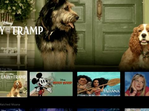 "Demo of the Disney Plus app shows a look at the ""Lady and the Tramp"" remake."