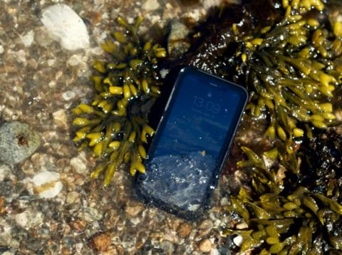 The author's iPhone XR, safe and sound, if awash, along the shores of Long Island Sound.