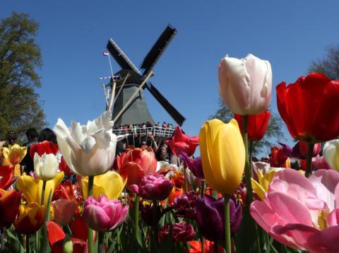 Países Bajos dejará de promocionar sus destinos más turísticos para reducir el número de visitantes