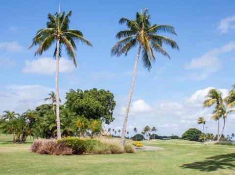 Un prístino campo de golf de 18 hoyos se extiende por el centro de la isla.