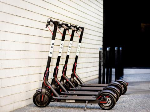 Scooter startup Bird just acquired rival Scoot, one of the two companies that beat out Uber and Lyft to operate in San Francisco