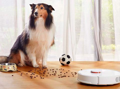 Los mejores robots aspiradores para mascotas