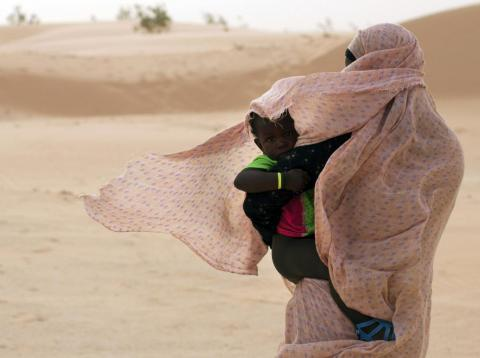 By the same calculations, Mauritania will be 50% more vulnerable to food insecurity by 2050.