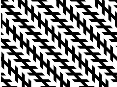 These black lines might not look parallel, but they are.