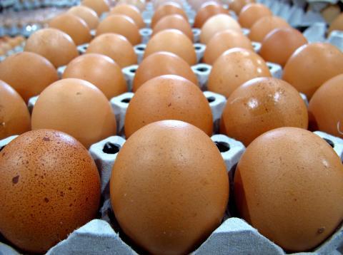 Sin embargo, prefiere los huevos de cáscara marrón.