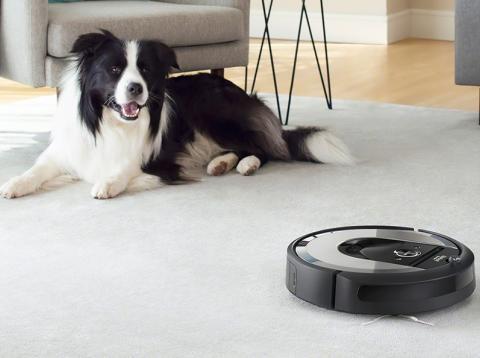 Roomba mascotas