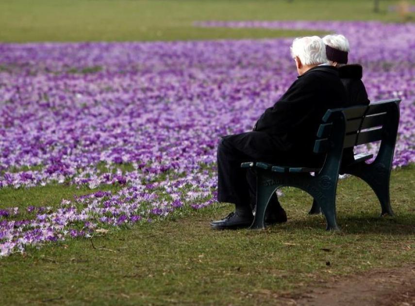 Descifrar el envejecimiento sería la clave para tratar el cáncer, Alzheimer, diabetes y otras enfermedades