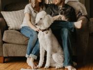mascotas, animales, pareja con perro y gato